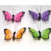 Butterfly set of 2! 7x3cm each colours assorted